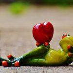 My funny valentine--frog